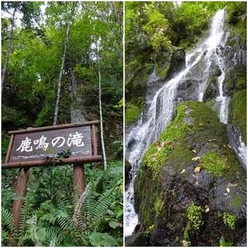 鹿鳴の滝.jpg