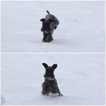 RUE雪遊び3.jpg